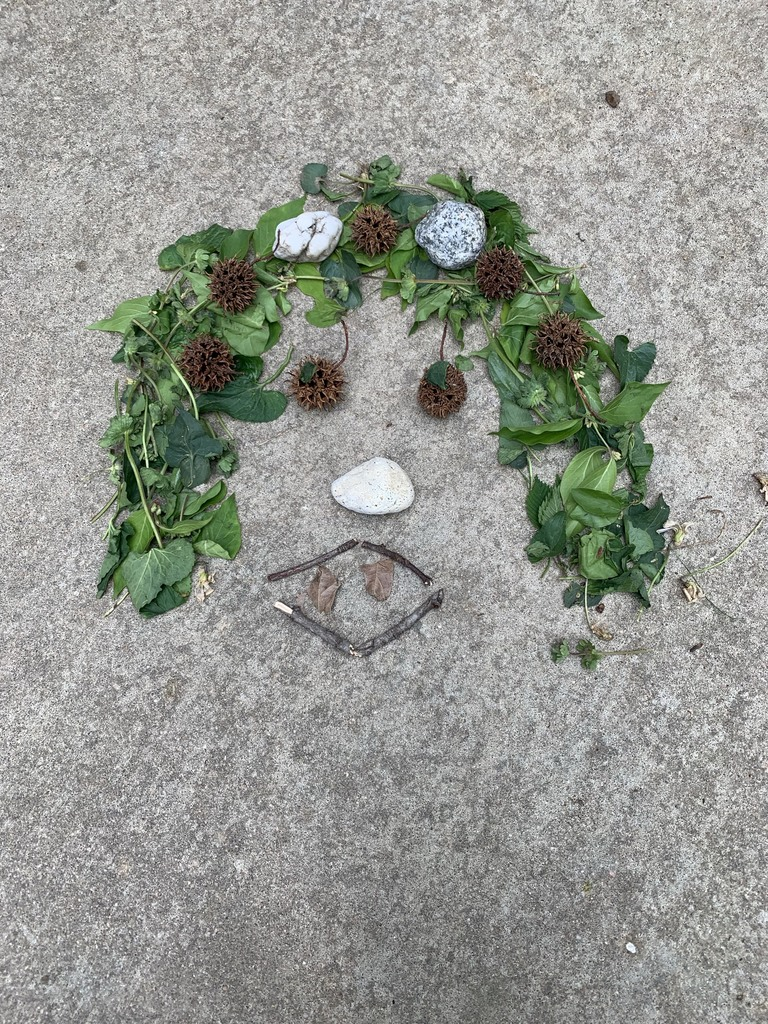 Face in Nature
